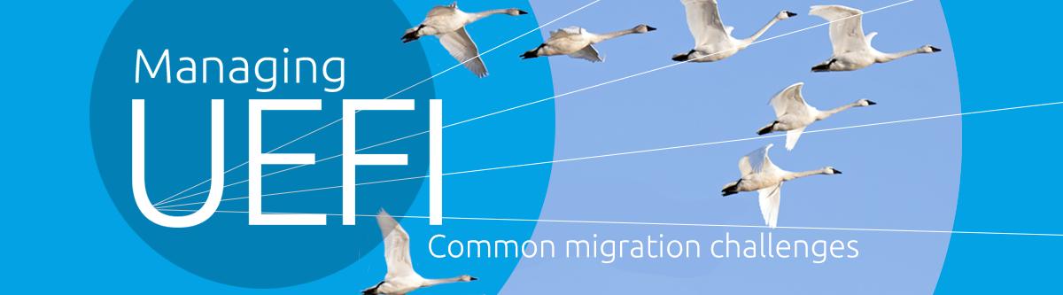 UEFI_Web_Header