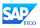 sap_fico